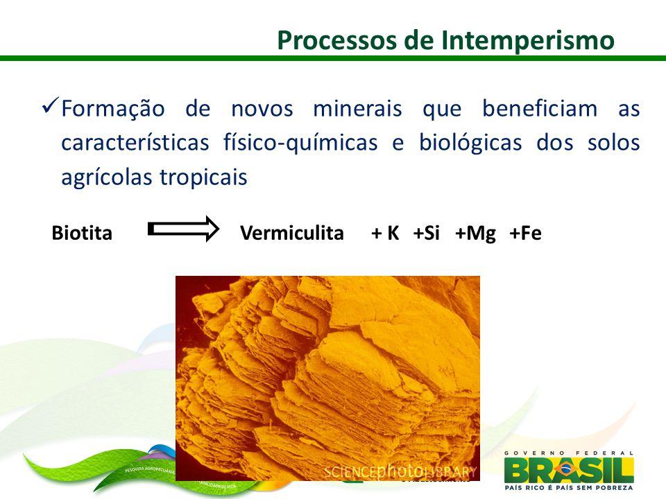  Formação de novos minerais que beneficiam as características físico-químicas e biológicas dos solos agrícolas tropicais + KVermiculitaBiotita+Si+Mg+Fe Processos de Intemperismo