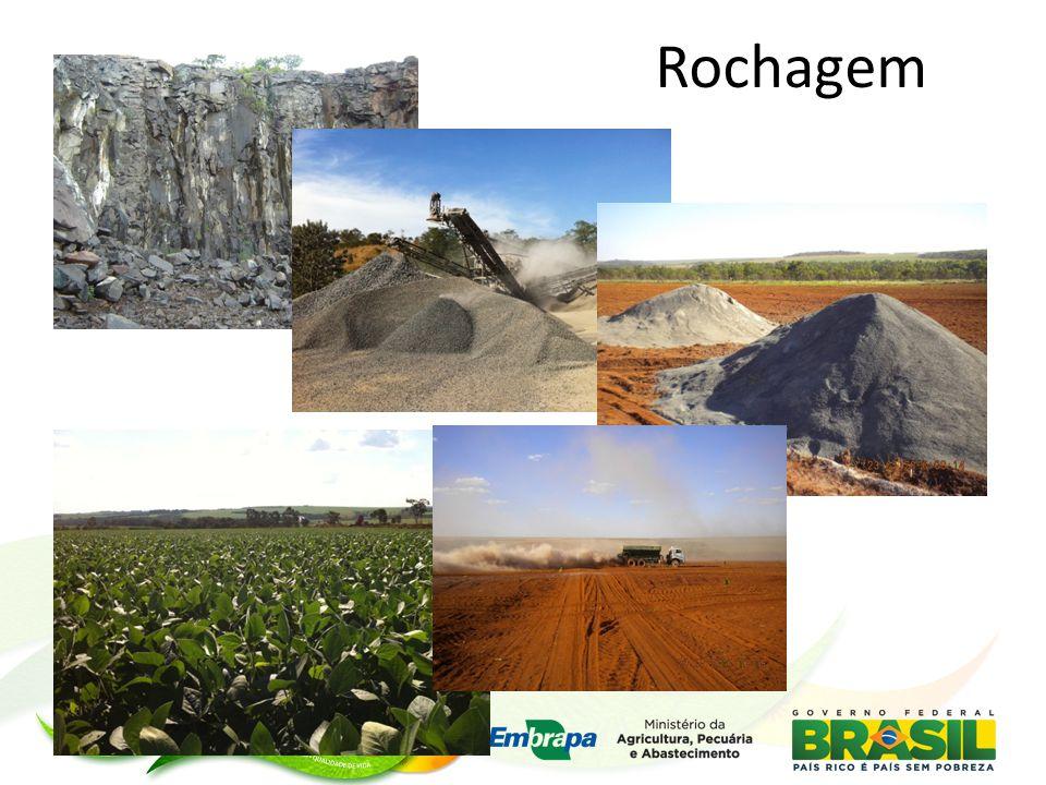 Alguns Benefícios Ambientais da Rochagem  Destinação nobre de alguns resíduos da mineração (produção agrícola)  Uso de recursos naturais regionais  Acumulação de carbono no solo  Conservação do solo  Melhor aproveitamento da água nos sistemas  Diminuição do custo energético do transporte de nutrientes Rochagem