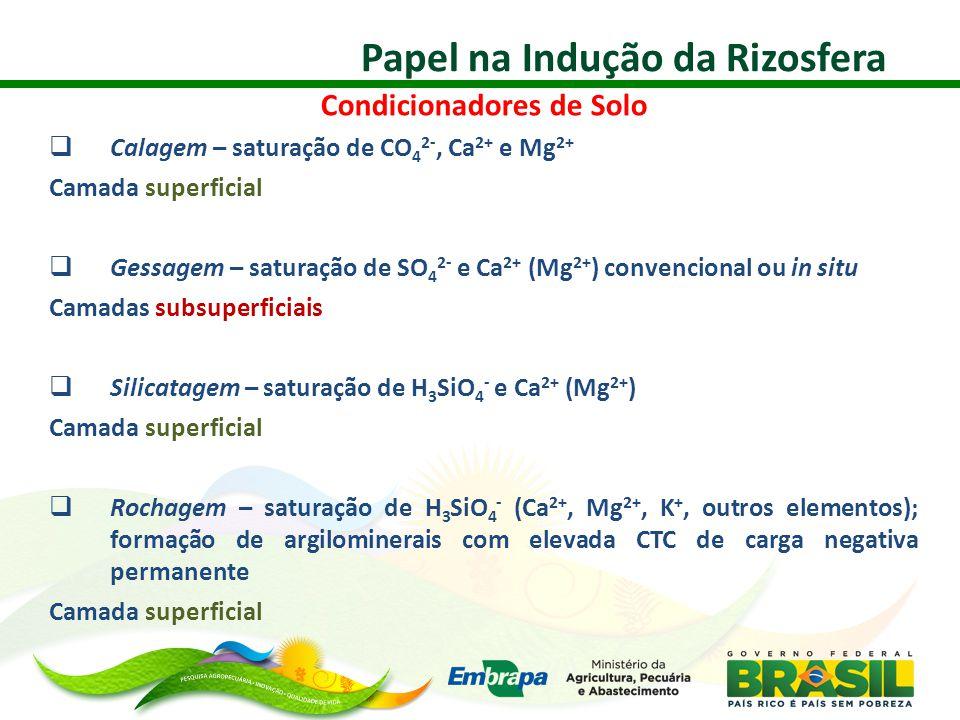 Papel na Indução da Rizosfera Condicionadores de Solo  Calagem – saturação de CO 4 2-, Ca 2+ e Mg 2+ Camada superficial  Gessagem – saturação de SO 4 2- e Ca 2+ (Mg 2+ ) convencional ou in situ Camadas subsuperficiais  Silicatagem – saturação de H 3 SiO 4 - e Ca 2+ (Mg 2+ ) Camada superficial  Rochagem – saturação de H 3 SiO 4 - (Ca 2+, Mg 2+, K +, outros elementos); formação de argilominerais com elevada CTC de carga negativa permanente Camada superficial