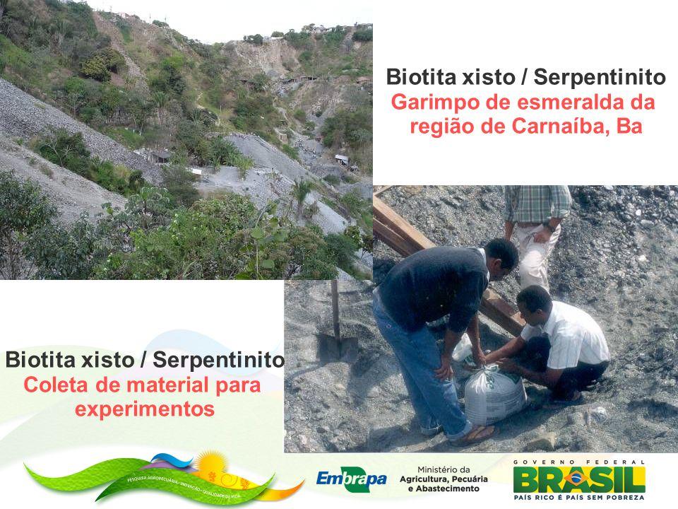 Biotita xisto / Serpentinito Garimpo de esmeralda da região de Carnaíba, Ba Biotita xisto / Serpentinito Coleta de material para experimentos