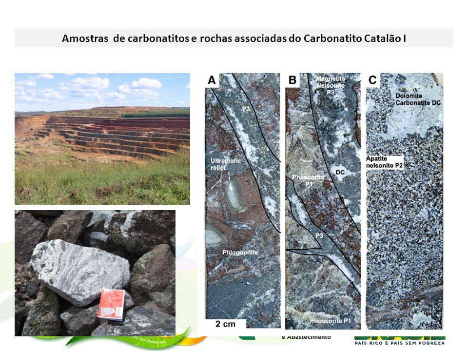 Amostras de carbonatitos e rochas associadas do Carbonatito Catalão I