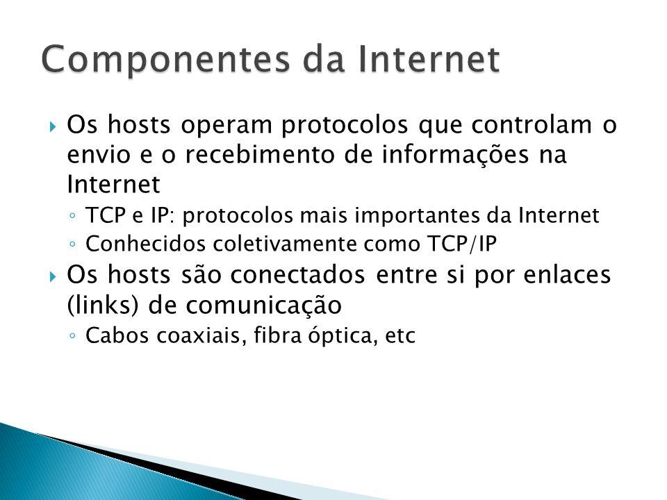  Os hosts operam protocolos que controlam o envio e o recebimento de informações na Internet ◦ TCP e IP: protocolos mais importantes da Internet ◦ Conhecidos coletivamente como TCP/IP  Os hosts são conectados entre si por enlaces (links) de comunicação ◦ Cabos coaxiais, fibra óptica, etc