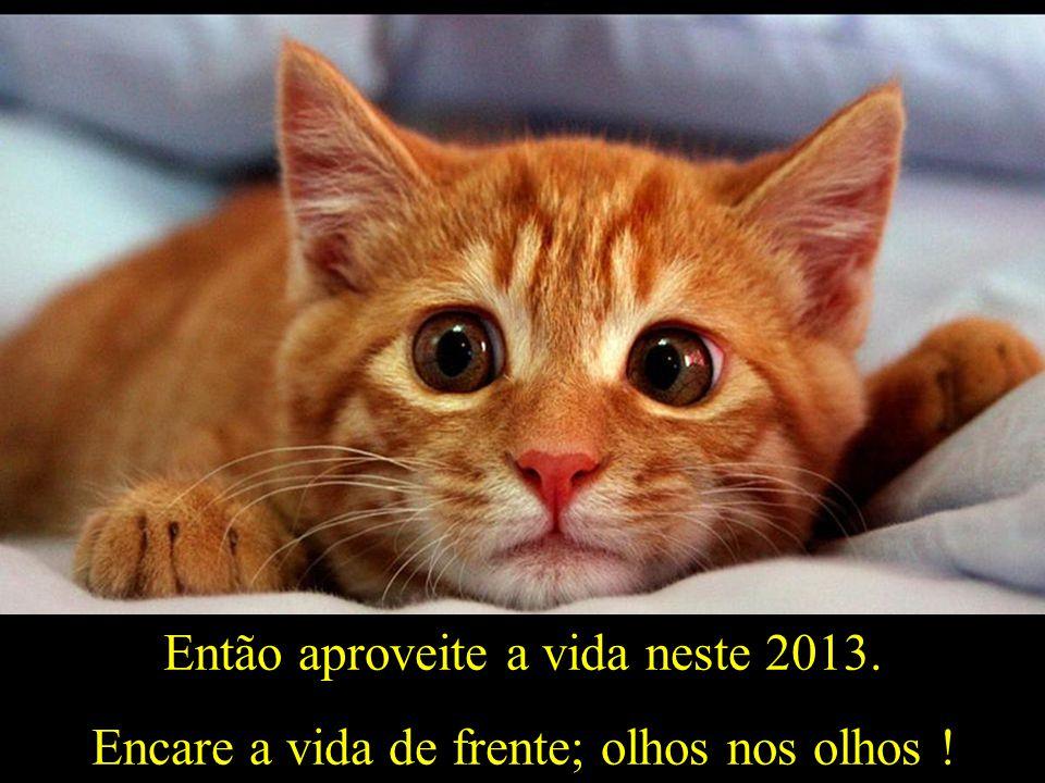 Então aproveite a vida neste 2013. Encare a vida de frente; olhos nos olhos !