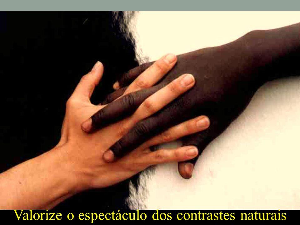 Valorize o espectáculo dos contrastes naturais