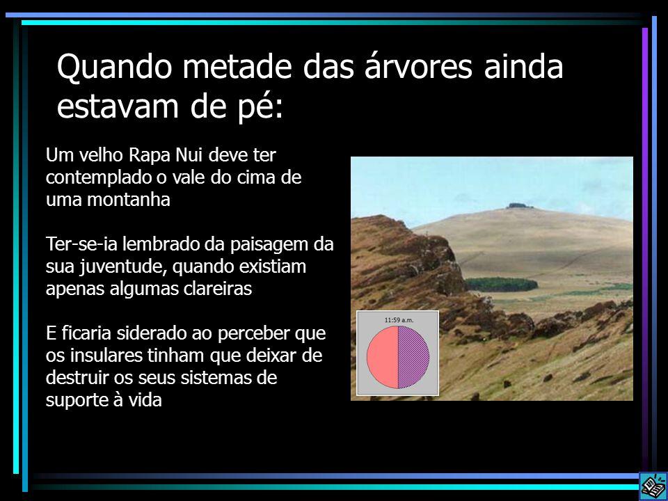 Quando metade das árvores ainda estavam de pé: Um velho Rapa Nui deve ter contemplado o vale do cima de uma montanha Ter-se-ia lembrado da paisagem da