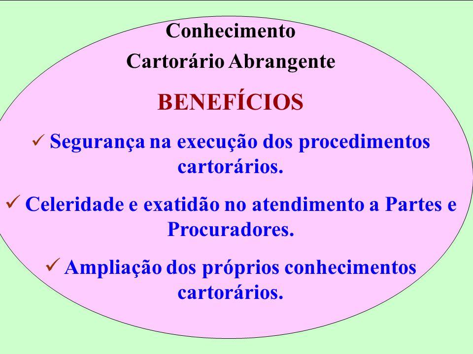 RESULTADOS ALCANÇADOS 2001 Julho/2002 u Tempo espera advogado 30min 8min u Autenticações protocolo v aras 10.630 u Satisfação do público: - Central de Informações 91% 98% - Protocolo Judiciário - 100% u Ações separação/divórcio 5m 2m u Atendimentos Niarb - 50 proc.