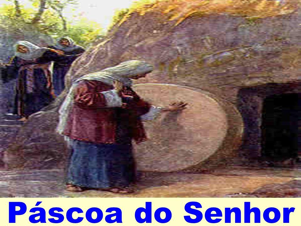 Irmãos: 1 Se ressuscitastes com Cristo,