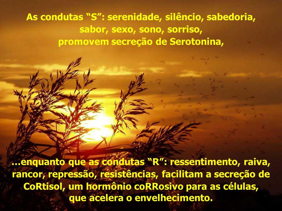 As condutas S : serenidade, silêncio, sabedoria, sabor, sexo, sono, sorriso, promovem secreção de Serotonina, …enquanto que as condutas R : ressentimento, raiva, rancor, repressão, resistências, facilitam a secreção de CoRtisol, um hormônio coRRosivo para as células, que acelera o envelhecimento.