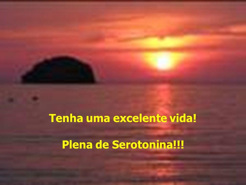 Tenha uma excelente vida! Plena de Serotonina!!!