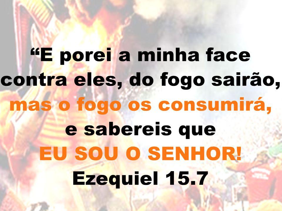 """""""E porei a minha face contra eles, do fogo sairão, mas o fogo os consumirá, e sabereis que EU SOU O SENHOR! Ezequiel 15.7"""