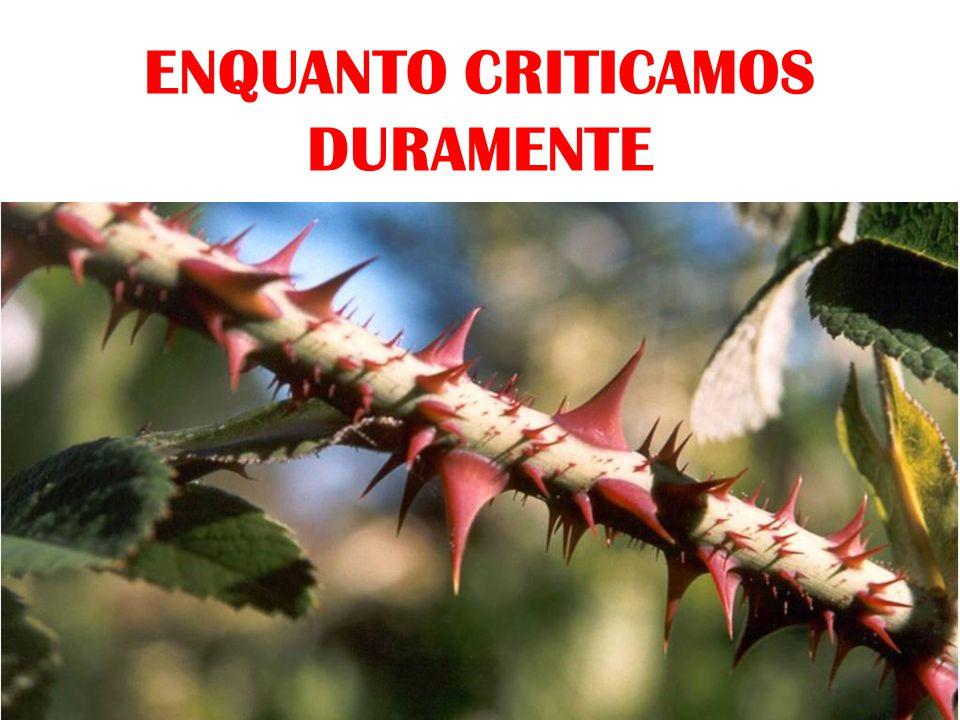 ENQUANTO CRITICAMOS DURAMENTE