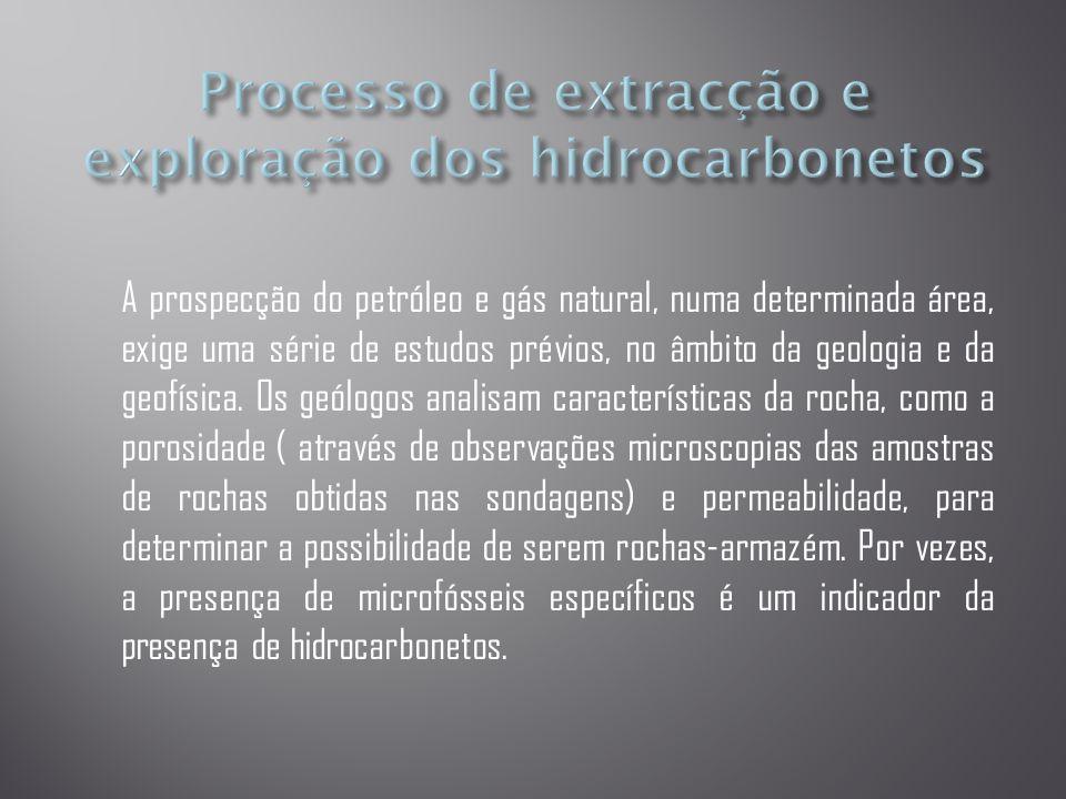 A prospecção do petróleo e gás natural, numa determinada área, exige uma série de estudos prévios, no âmbito da geologia e da geofísica.