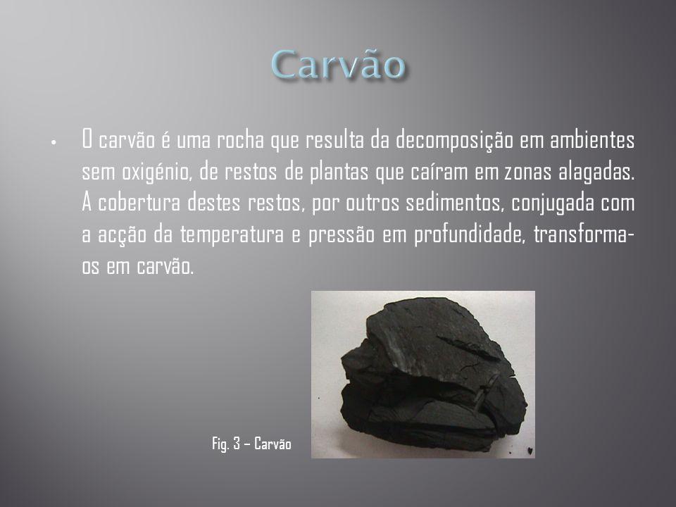 • O carvão é uma rocha que resulta da decomposição em ambientes sem oxigénio, de restos de plantas que caíram em zonas alagadas.