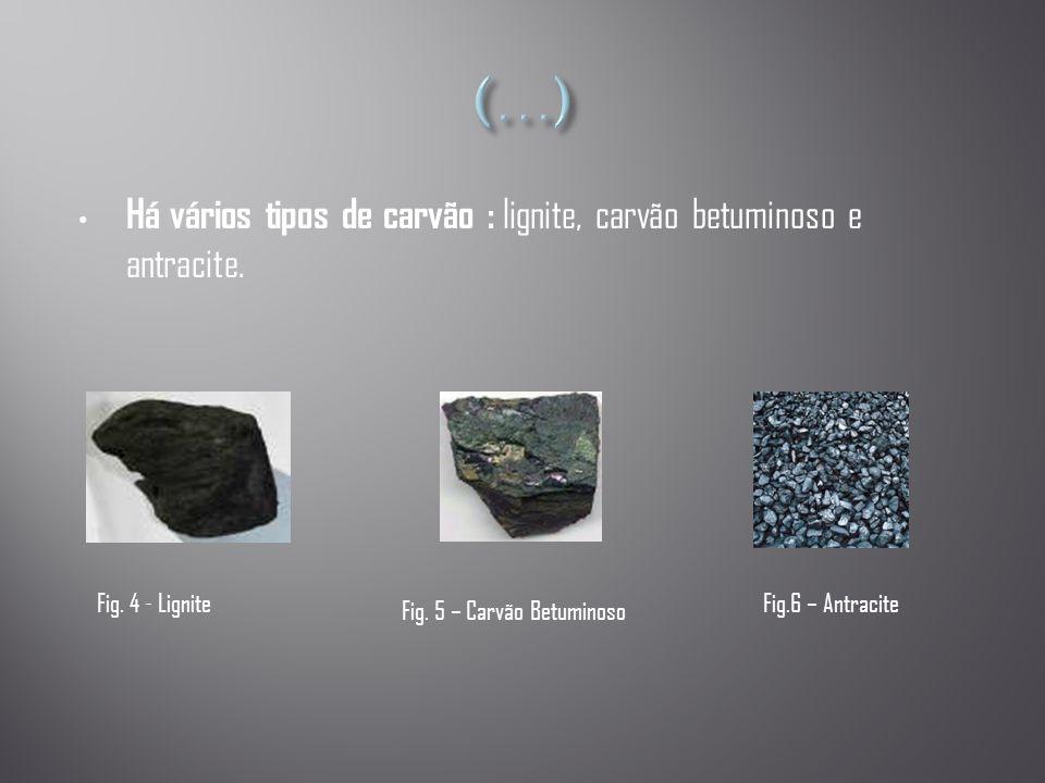 • Há vários tipos de carvão : lignite, carvão betuminoso e antracite. Fig. 4 - Lignite Fig. 5 – Carvão Betuminoso Fig.6 – Antracite