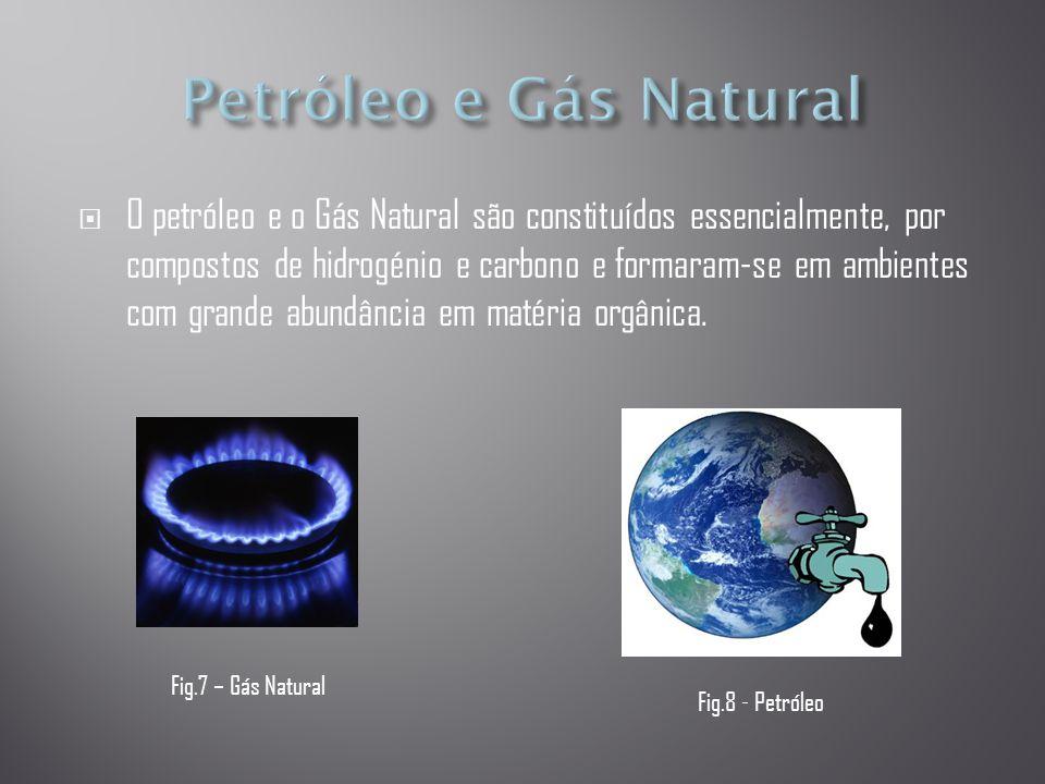 líquidosgasosos  A acumulação contínua de matéria orgânica, ocorre, sob a acção de temperatura e pressão elevadas, reacções químicas que transformam lentamente alguma da matéria orgânica em Hidrocarbonetos líquidos (petróleo) ou gasosos (gás natural).