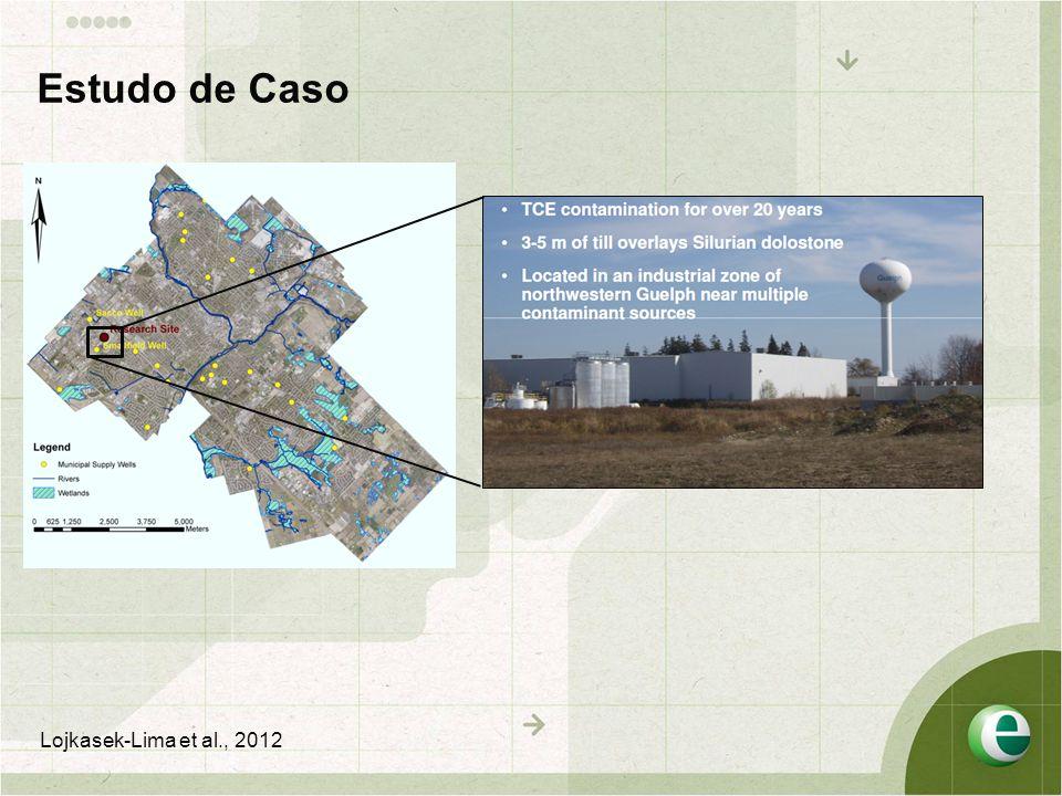 Estudo de Caso Lojkasek-Lima et al., 2012
