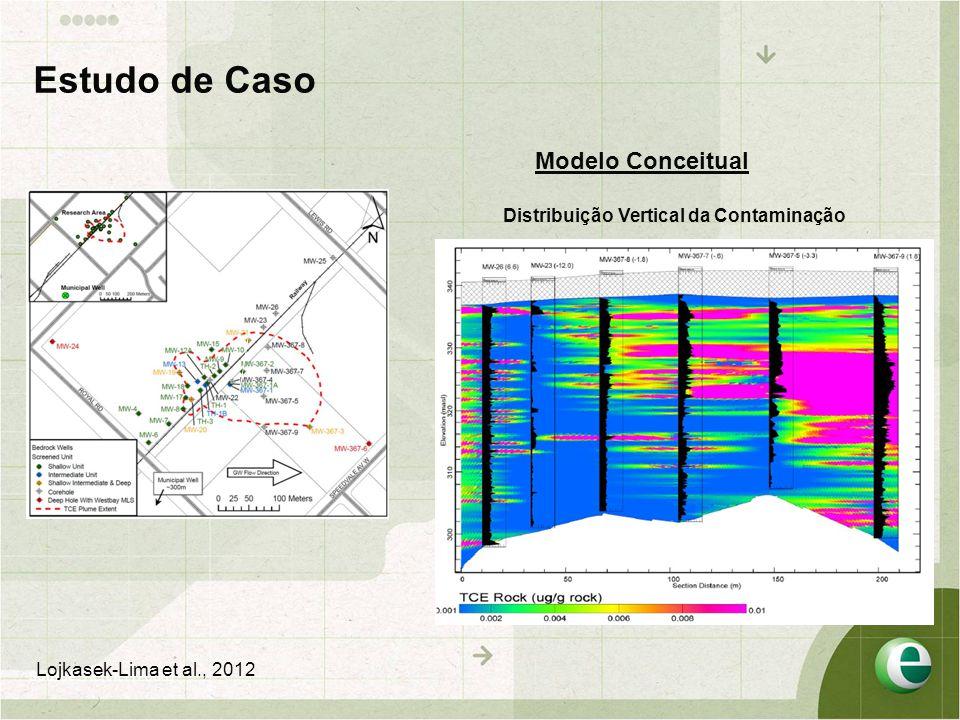 Modelo Conceitual Distribuição Vertical da Contaminação C C` Source: Kennel (2008) Estudo de Caso Lojkasek-Lima et al., 2012