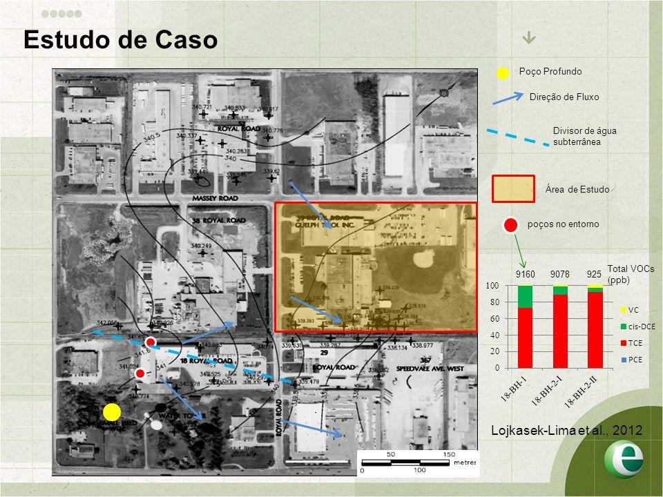 Poço Profundo Direção de Fluxo poços no entorno Área de Estudo 91609078925 Total VOCs (ppb) Divisor de água subterrânea Estudo de Caso Lojkasek-Lima et al., 2012