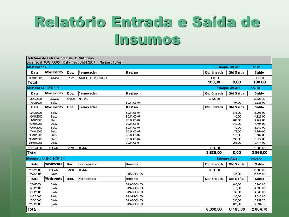 www.brazsoft.com.br (65) 3023 9013 Relatório Entrada e Saída de Insumos