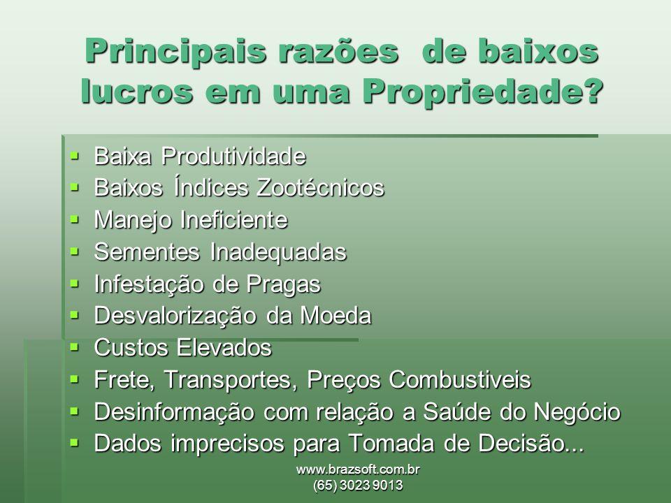www.brazsoft.com.br (65) 3023 9013 Principais razões de baixos lucros em uma Propriedade?  Baixa Produtividade  Baixos Índices Zootécnicos  Manejo