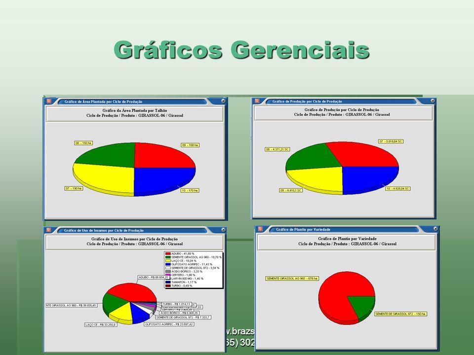 www.brazsoft.com.br (65) 3023 9013 Gráficos Gerenciais