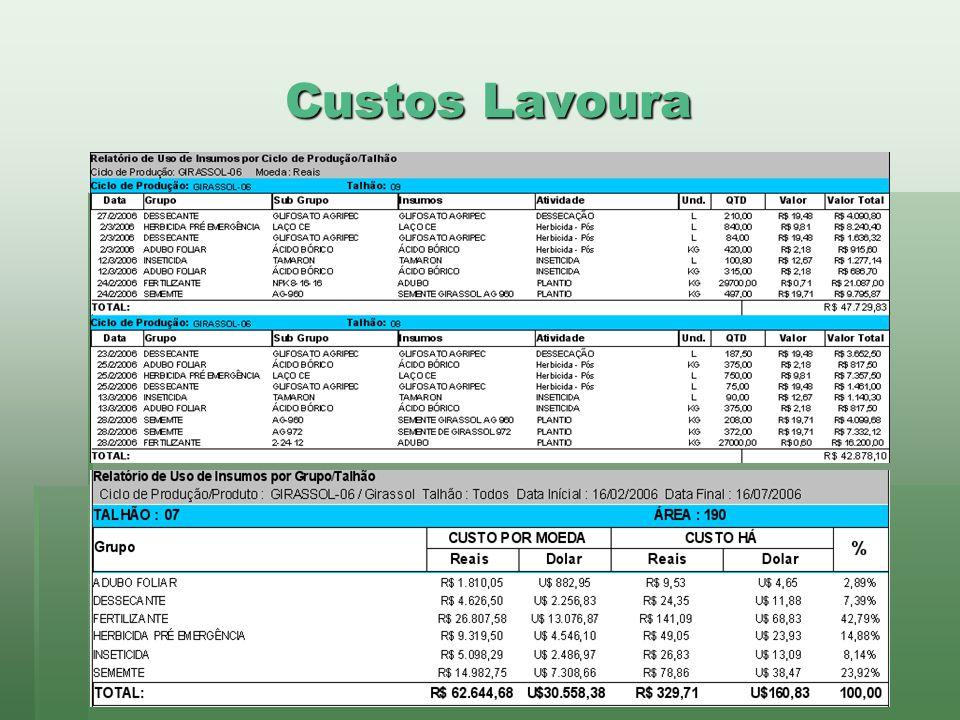 www.brazsoft.com.br (65) 3023 9013 Custos Lavoura