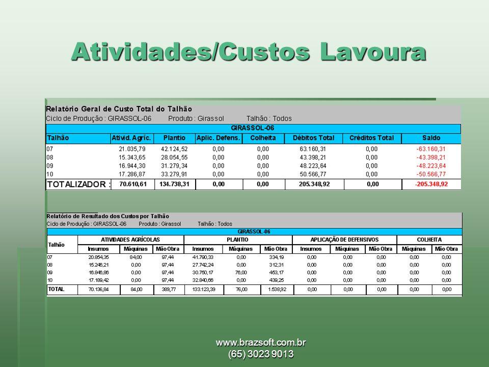 www.brazsoft.com.br (65) 3023 9013 Atividades/Custos Lavoura