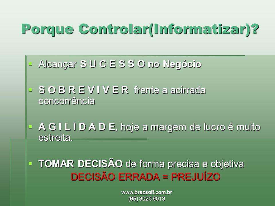 www.brazsoft.com.br (65) 3023 9013 Porque Controlar(Informatizar)?  Alcançar S U C E S S O no Negócio  S O B R E V I V E R frente a acirrada concorr