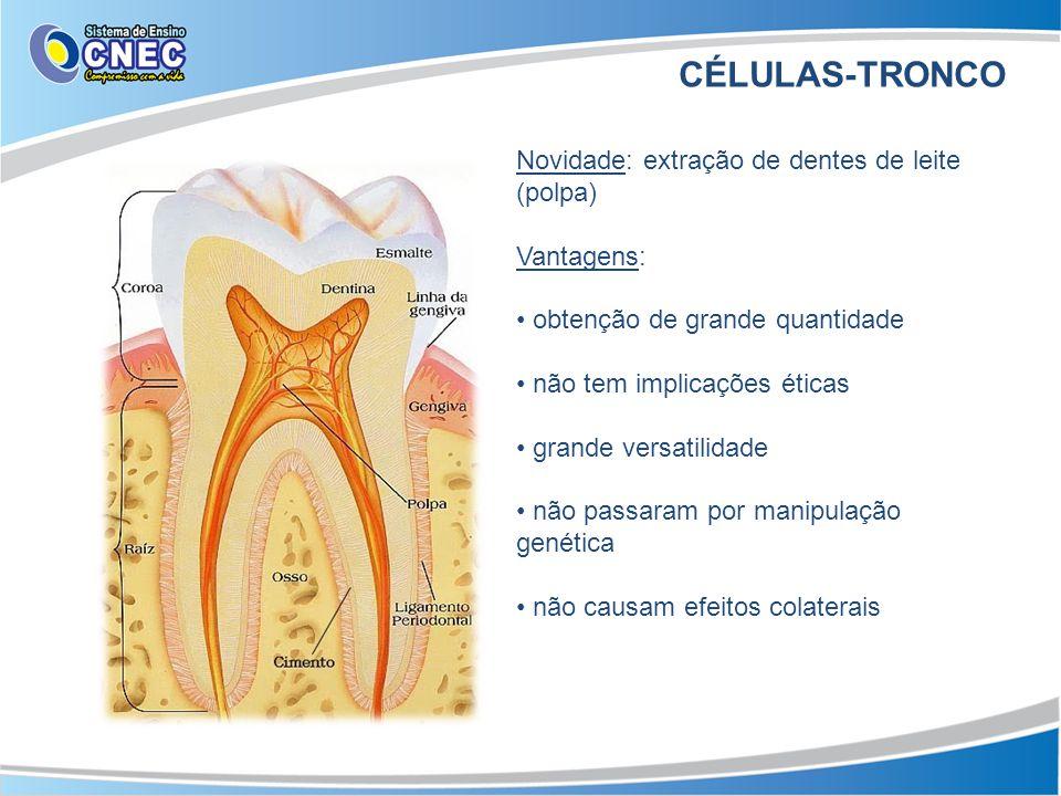 CÉLULAS-TRONCO Novidade: extração de dentes de leite (polpa) Vantagens: • obtenção de grande quantidade • não tem implicações éticas • grande versatil