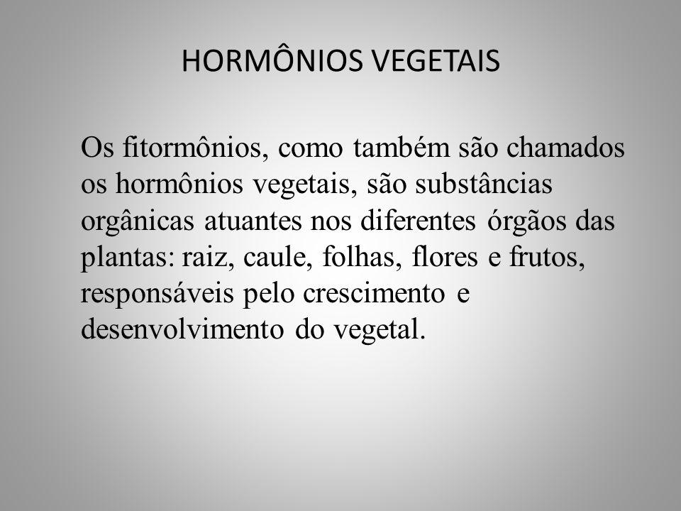 HORMÔNIOS VEGETAIS • Entre as categorias de hormônios vegetais relacionados à divisão celular, crescimento e diferenciação, destacam-se : • Auxinas • Giberelinas • Etileno • Ácido Abscísico • Citocininas