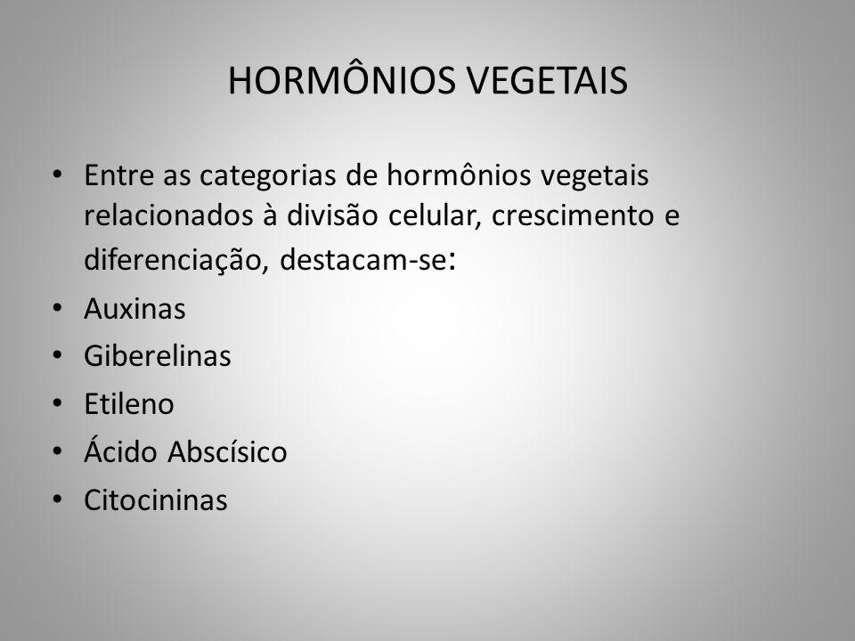 HORMÔNIOS VEGETAIS • Entre as categorias de hormônios vegetais relacionados à divisão celular, crescimento e diferenciação, destacam-se : • Auxinas •