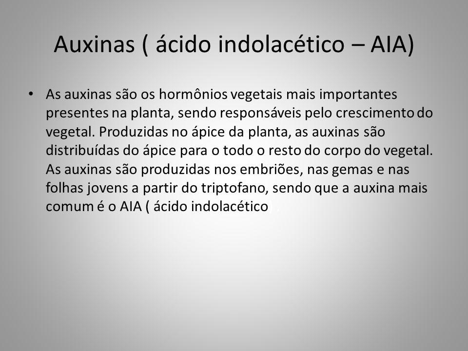 Auxinas ( ácido indolacético – AIA) • As auxinas são os hormônios vegetais mais importantes presentes na planta, sendo responsáveis pelo crescimento d