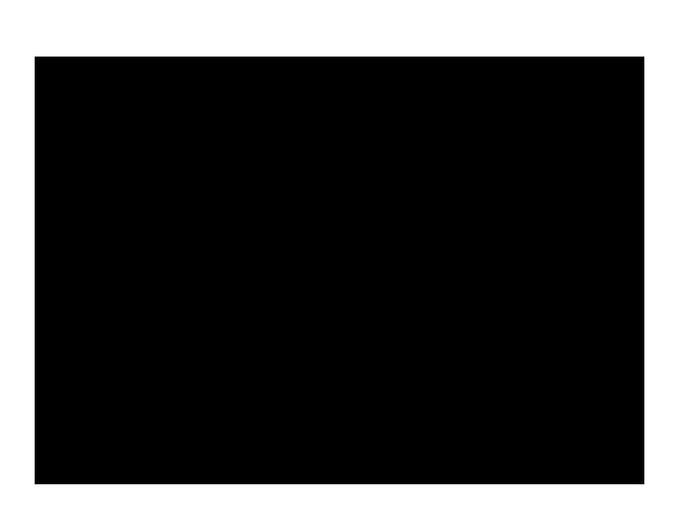 4.Uma evangelização para o aprofundamento do querigma •160.