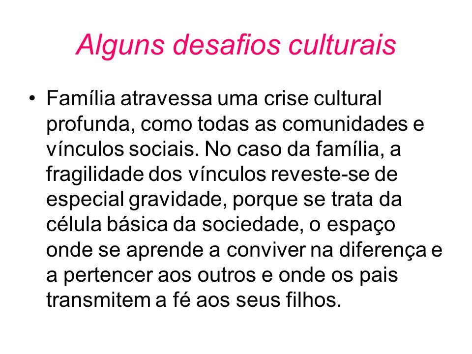 Alguns desafios culturais •Família atravessa uma crise cultural profunda, como todas as comunidades e vínculos sociais. No caso da família, a fragilid