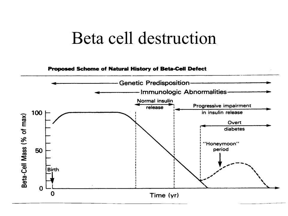 Beta cell destruction