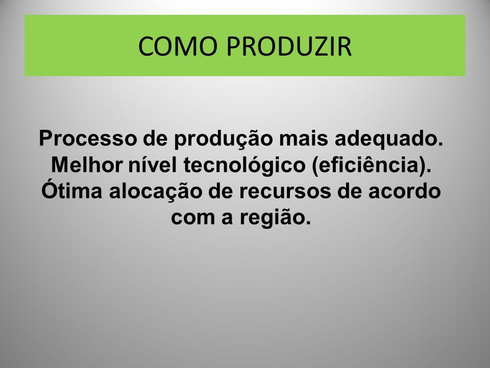 COMO PRODUZIR Processo de produção mais adequado. Melhor nível tecnológico (eficiência). Ótima alocação de recursos de acordo com a região.