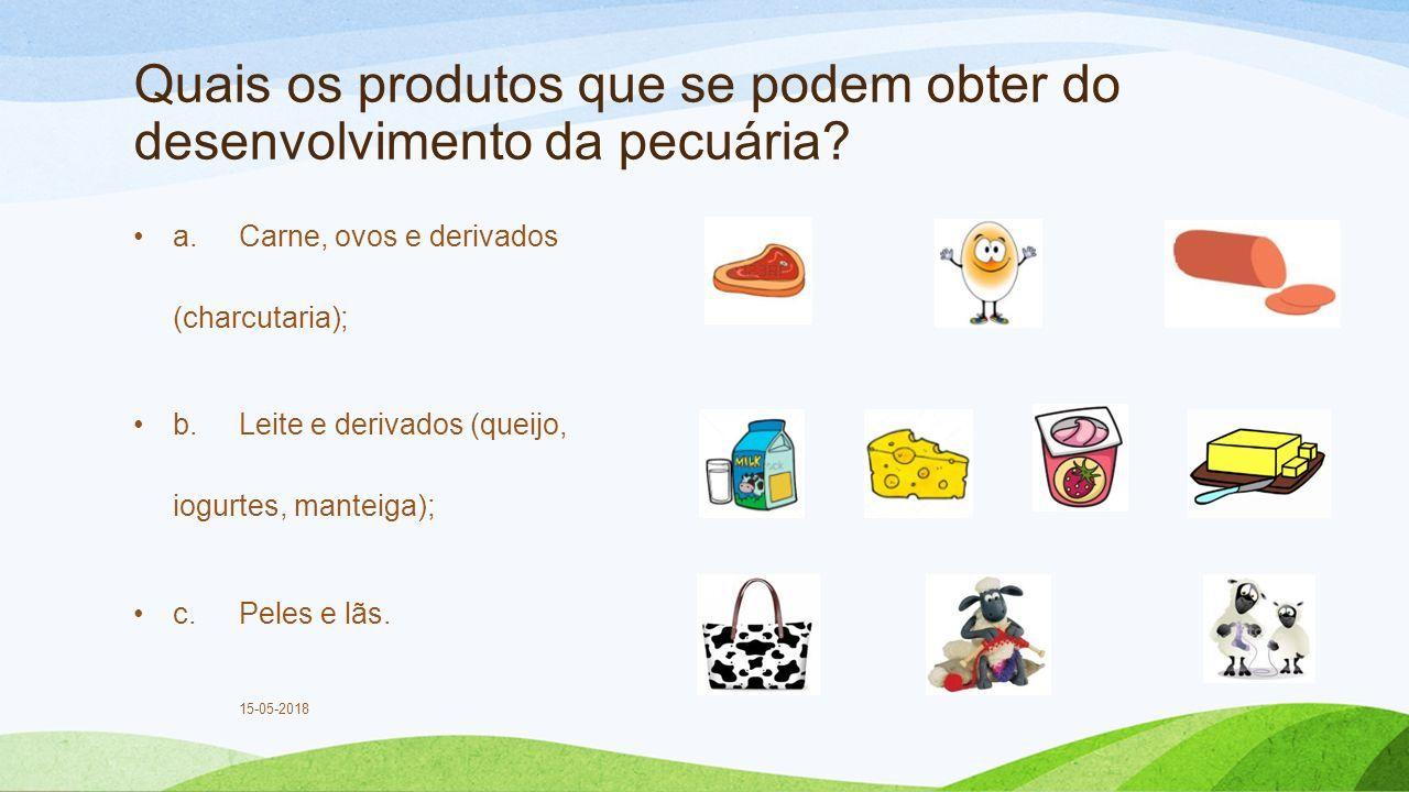 Quais os produtos que se podem obter do desenvolvimento da pecuária.