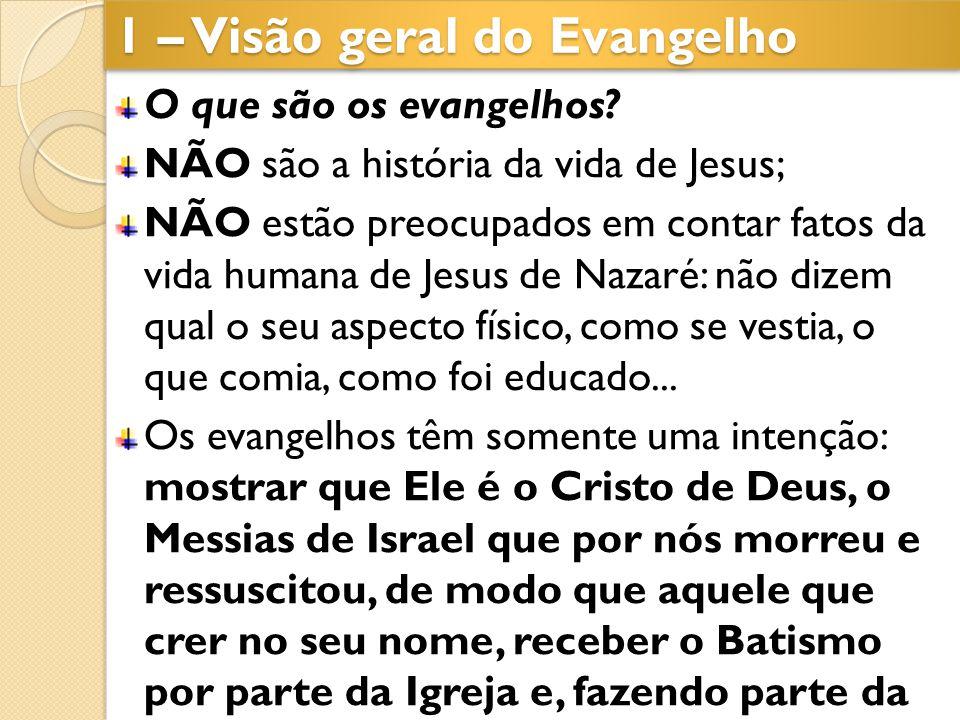1 – Visão geral do Evangelho O que são os evangelhos? NÃO são a história da vida de Jesus; NÃO estão preocupados em contar fatos da vida humana de Jes