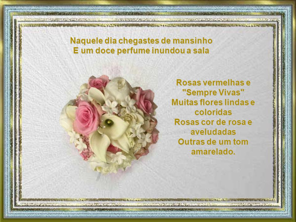 Rosas vermelhas e Sempre Vivas Muitas flores lindas e coloridas Rosas cor de rosa e aveludadas Outras de um tom amarelado.