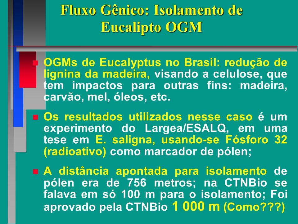 Fluxo Gênico: Isolamento de Eucalipto OGM OGMs de Eucalyptus no Brasil: redução de lignina da madeira, visando a celulose, que tem impactos para outras fins: madeira, carvão, mel, óleos, etc.