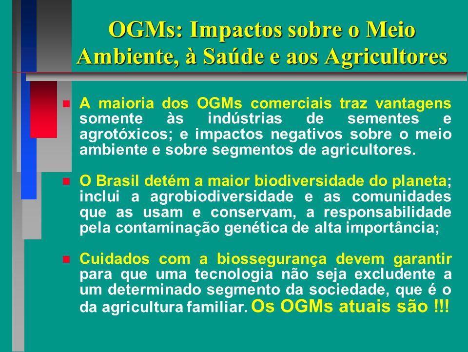 OGMs: Impactos sobre o Meio Ambiente, à Saúde e aos Agricultores A maioria dos OGMs comerciais traz vantagens somente às indústrias de sementes e agrotóxicos; e impactos negativos sobre o meio ambiente e sobre segmentos de agricultores.
