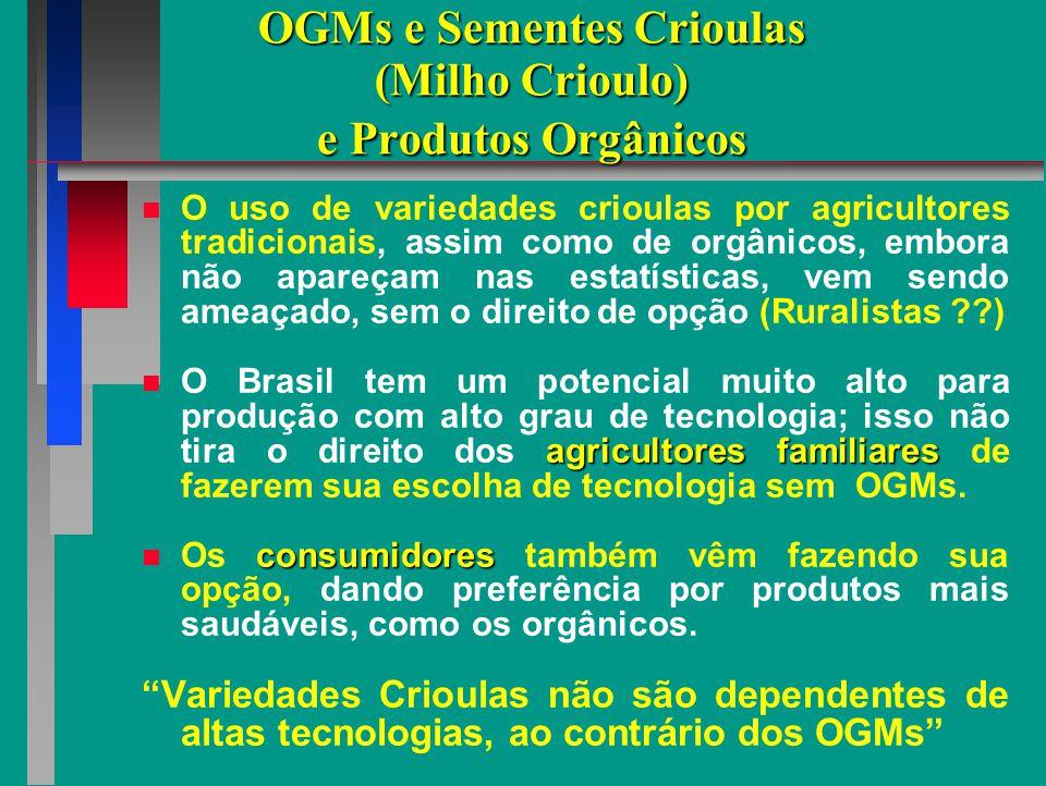 VARIEDADES CRIOULAS DE MILHO Camponês de volta à sua origem Uso e Conservação da Agrobiodiversidade Conservação On Farm