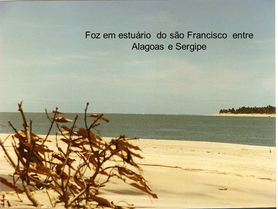 Foz em estuário do são Francisco entre Alagoas e Sergipe