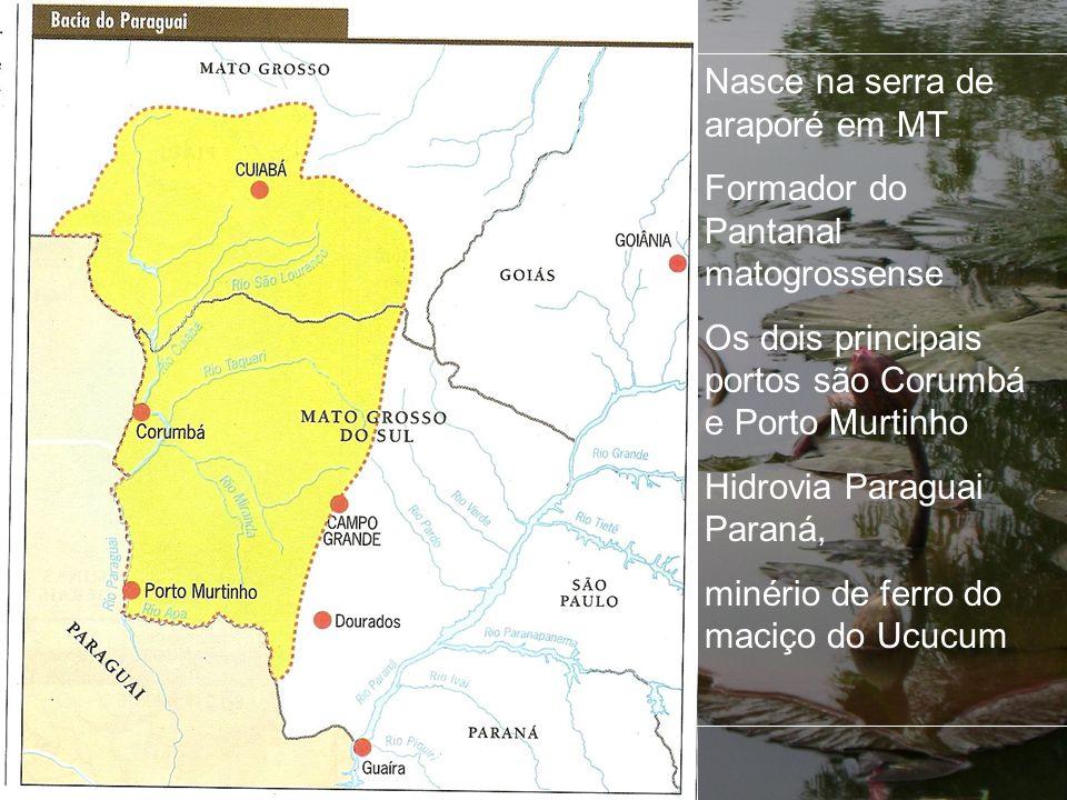 Nasce na serra de araporé em MT Formador do Pantanal matogrossense Os dois principais portos são Corumbá e Porto Murtinho Hidrovia Paraguai Paraná, mi