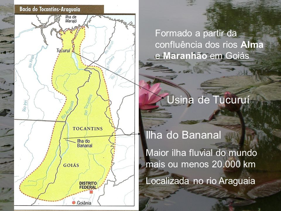 Formado a partir da confluência dos rios Alma e Maranhão em Goiás Usina de Tucuruí Ilha do Bananal Maior ilha fluvial do mundo mais ou menos 20.000 km