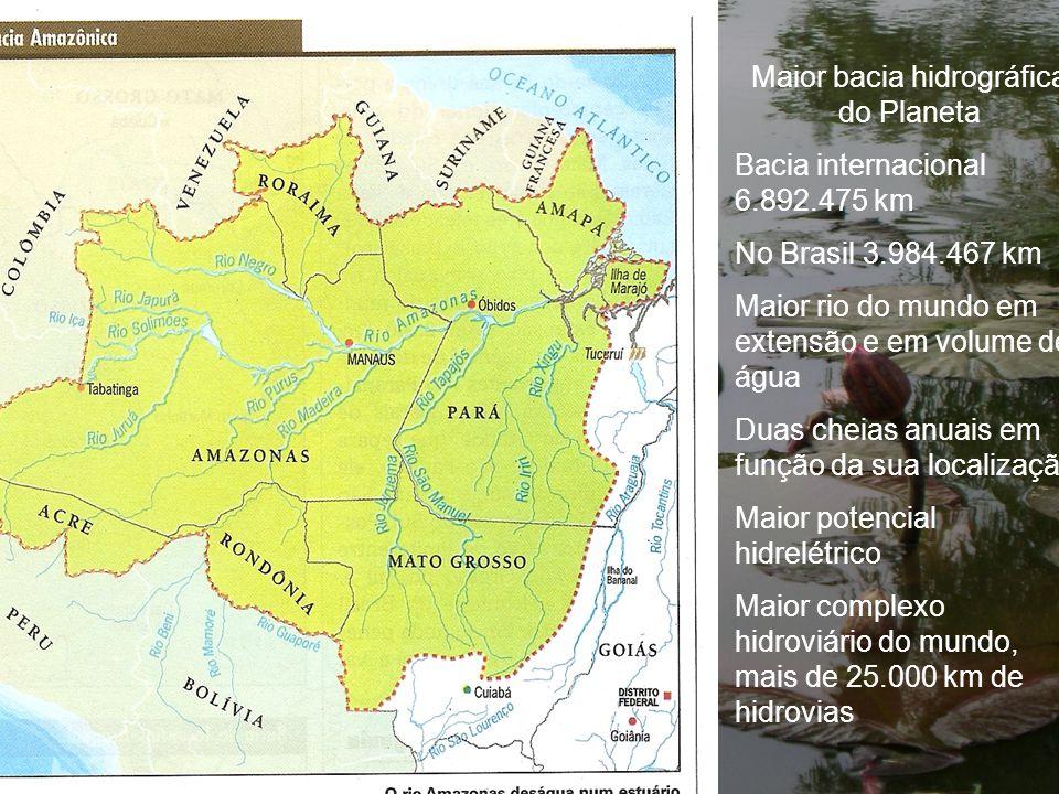 Maior bacia hidrográfica do Planeta Bacia internacional 6.892.475 km No Brasil 3.984.467 km Maior rio do mundo em extensão e em volume de água Duas ch