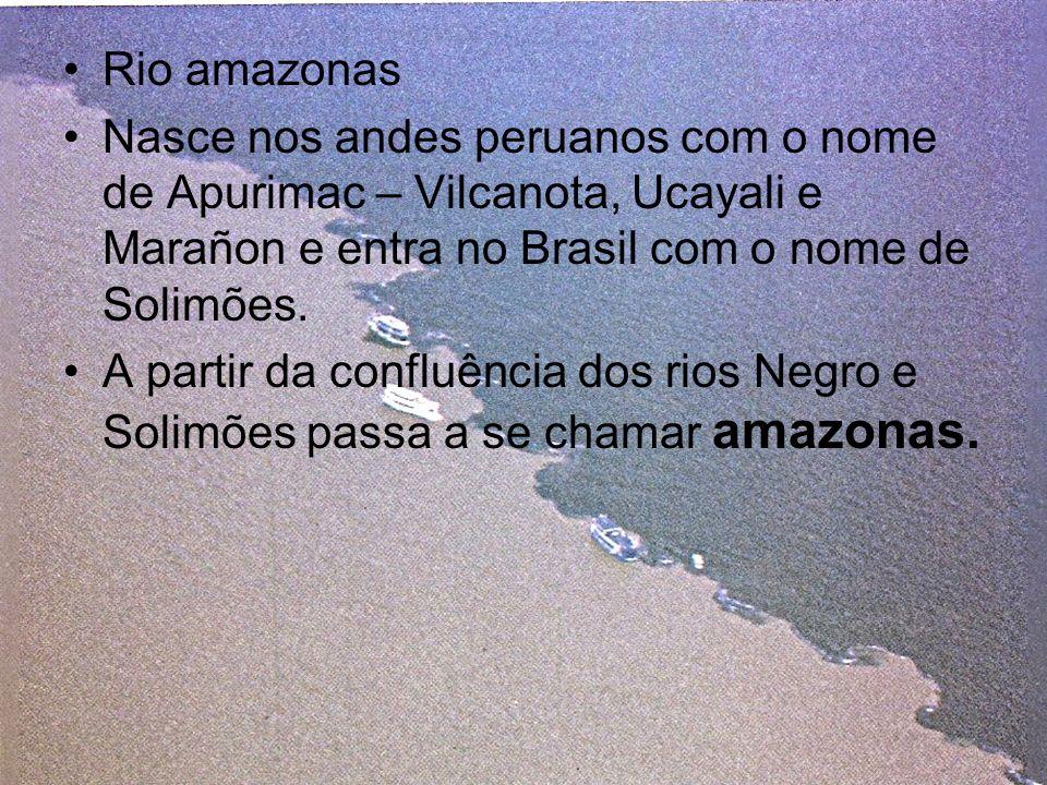 Rio amazonas Nasce nos andes peruanos com o nome de Apurimac – Vilcanota, Ucayali e Marañon e entra no Brasil com o nome de Solimões. A partir da conf