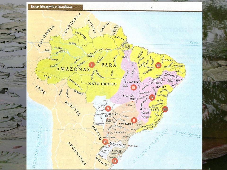 Maior bacia hidrográfica do Planeta Bacia internacional 6.892.475 km No Brasil 3.984.467 km Maior rio do mundo em extensão e em volume de água Duas cheias anuais em função da sua localização Maior potencial hidrelétrico Maior complexo hidroviário do mundo, mais de 25.000 km de hidrovias