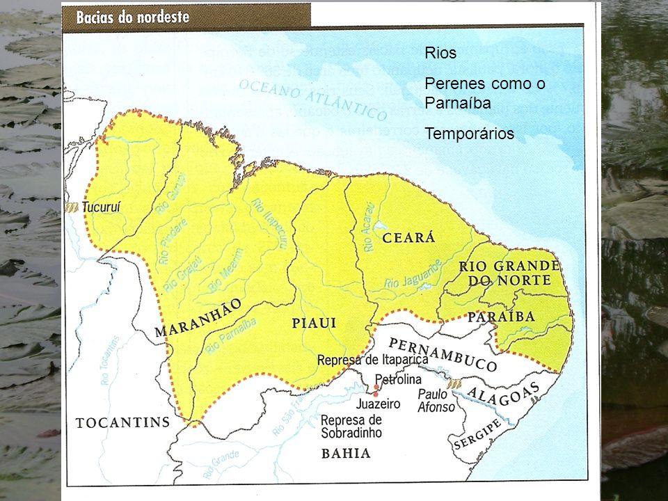 Rio amazonas Nasce nos andes peruanos com o nome de Apurimac – Vilcanota, Ucayali e Marañon e entra no Brasil com o nome de Solimões.