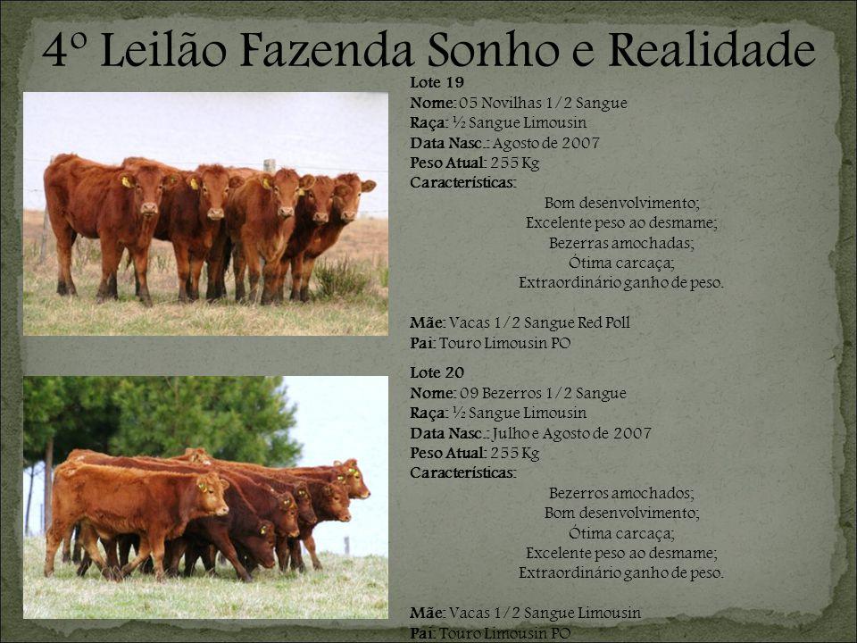 Lote 20 Nome: 09 Bezerros 1/2 Sangue Raça: ½ Sangue Limousin Data Nasc.: Julho e Agosto de 2007 Peso Atual: 255 Kg Características: Bezerros amochados